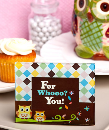 CLEARANCE Adorable Owl Picture Frames baby shower favors